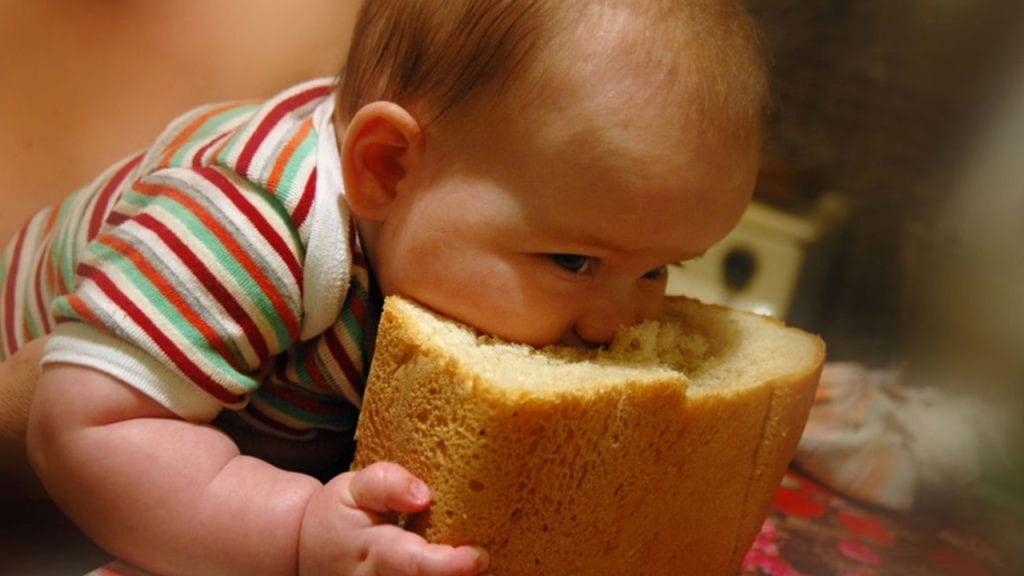 hleb i malysh