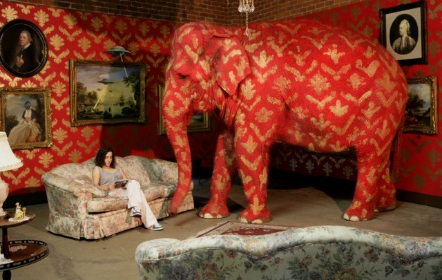 slon-v-komnate