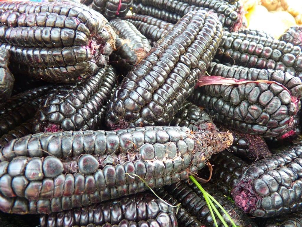 чёрная кукуруза